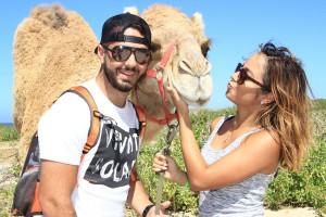cabo-camel11