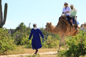 cabo-camel2