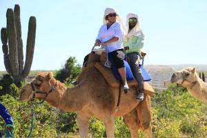 cabo-camel3