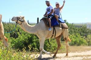 cabo-camel5
