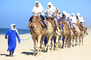 Riding Camels in Cabo