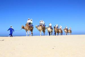 cabo-camel8