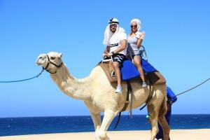 cabo-camel9